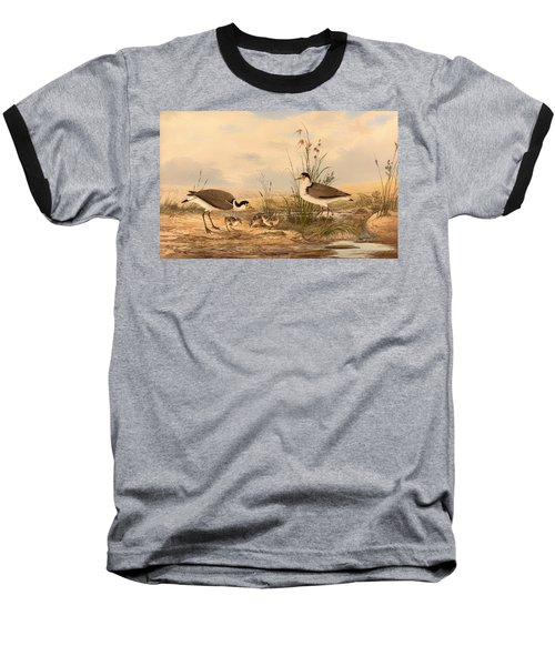 Masked Lapwing Baseball T-Shirt by Mountain Dreams