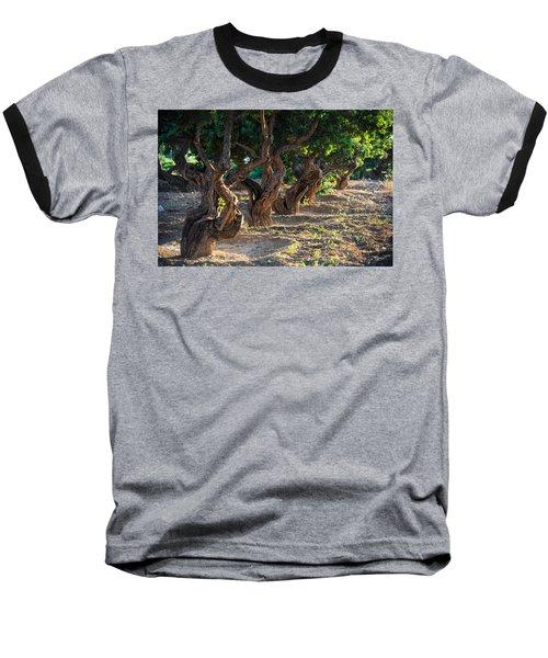 Mastic Tree   Baseball T-Shirt
