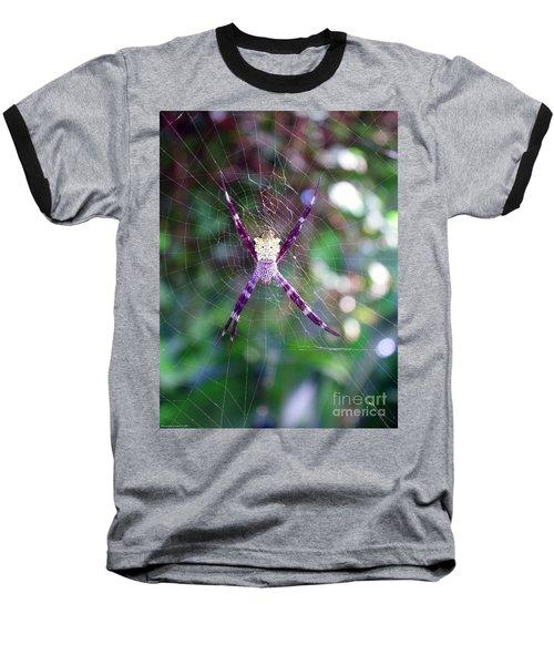 Maui Orbweaver/garden Spider Baseball T-Shirt