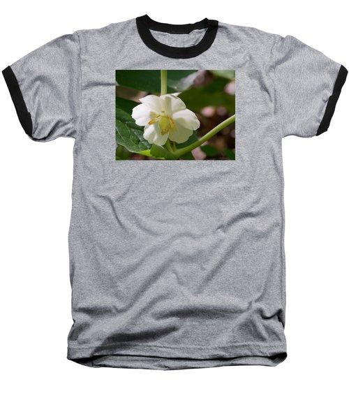 May-apple Blossom Baseball T-Shirt