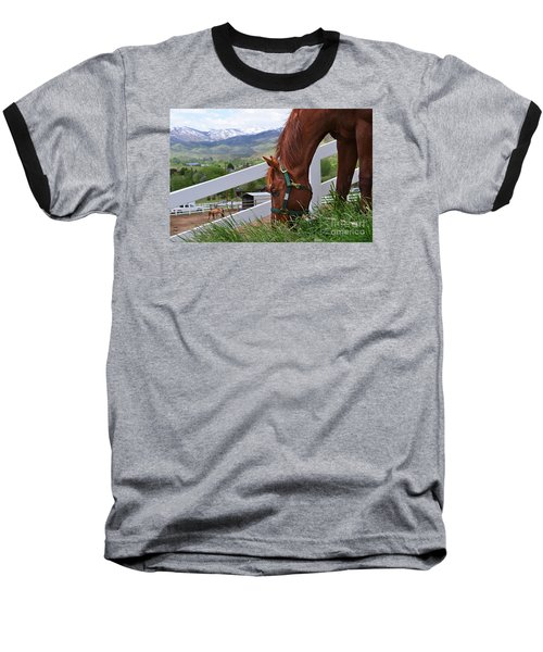 Mccool Grazing Baseball T-Shirt