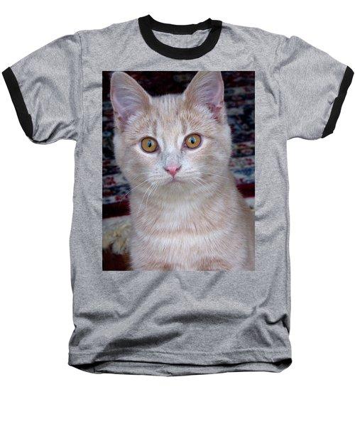 Me- No, It Was The Dog Baseball T-Shirt