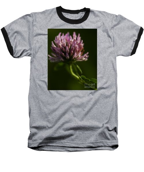 Meadow Clover Baseball T-Shirt by JT Lewis
