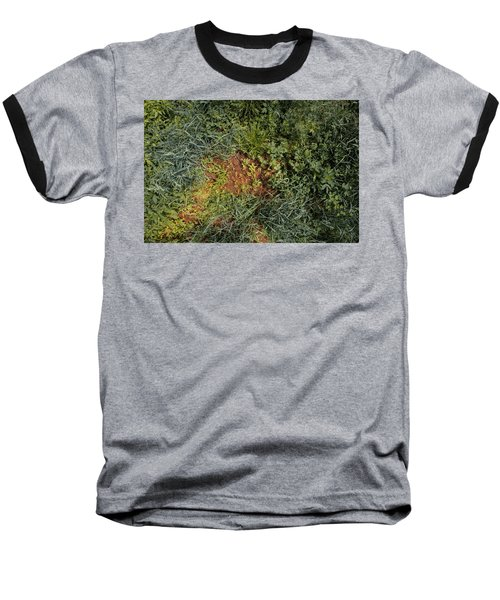 Meadow Floor Baseball T-Shirt