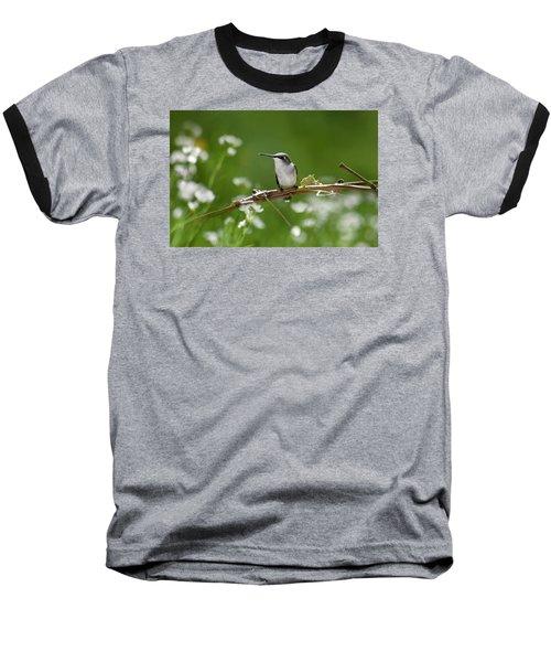 Meadow Hummingbird Baseball T-Shirt