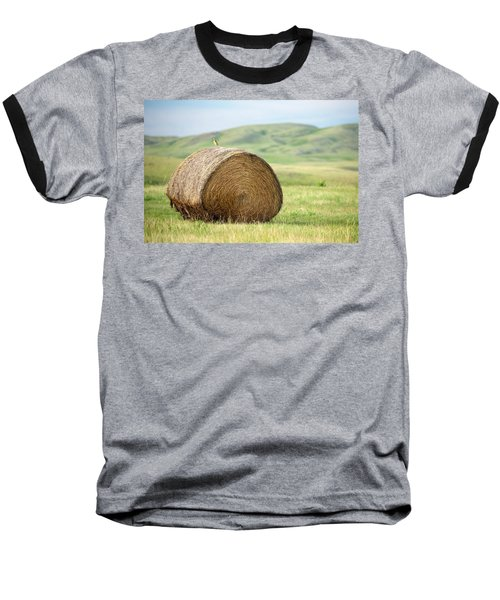 Meadowlark Heaven Baseball T-Shirt by Todd Klassy