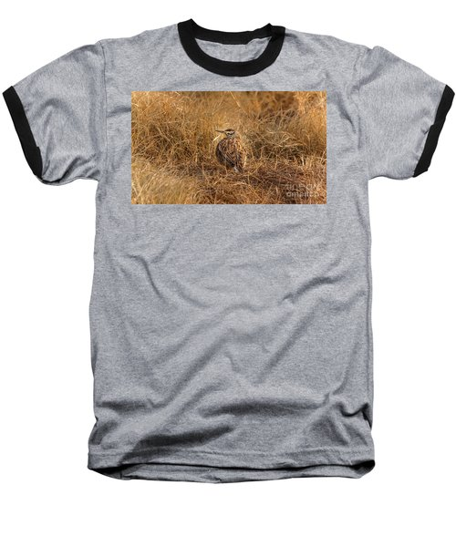 Meadowlark Hiding In Grass Baseball T-Shirt by Robert Frederick