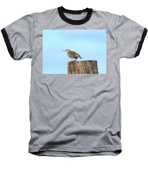 Meadowlark Roost Baseball T-Shirt by Mike Dawson