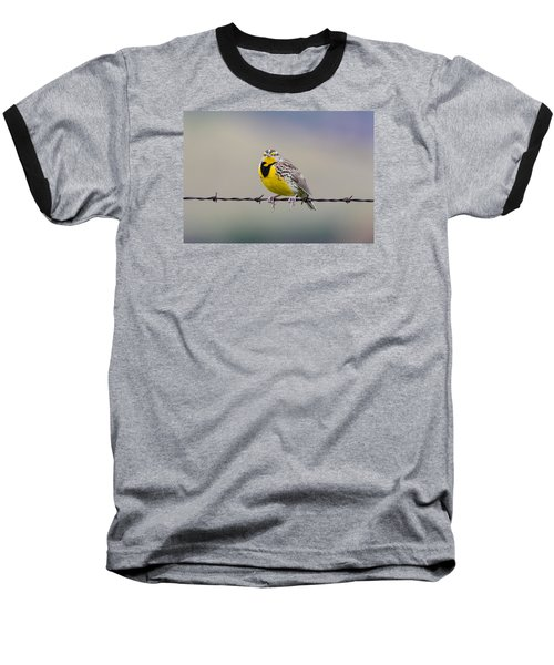 Meadowlark Stare Baseball T-Shirt by Marc Crumpler