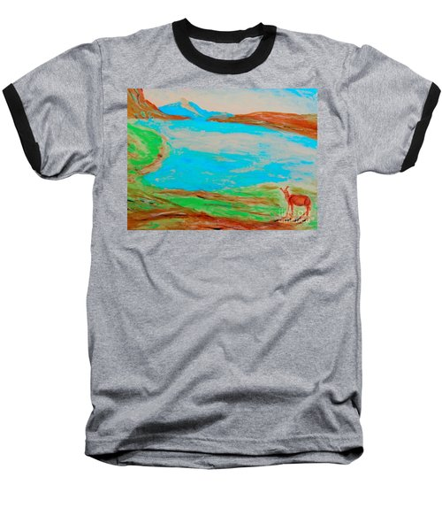 Medicine Lake Baseball T-Shirt