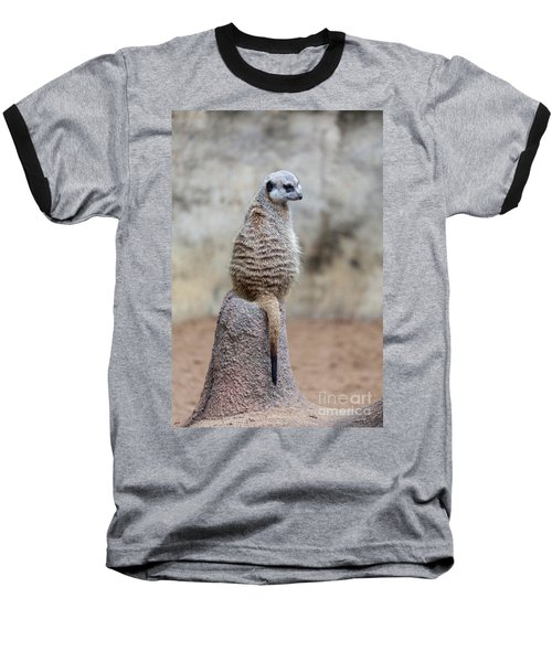 Meerkat Sitting And Looking Right Baseball T-Shirt