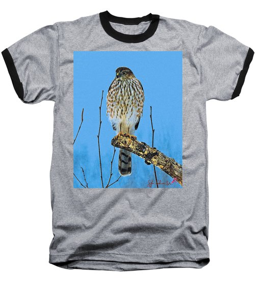 Merlin    Not The Majician Baseball T-Shirt by John Selmer Sr