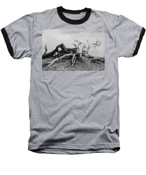 Mesquite Roots - Death Valley 2015 Baseball T-Shirt
