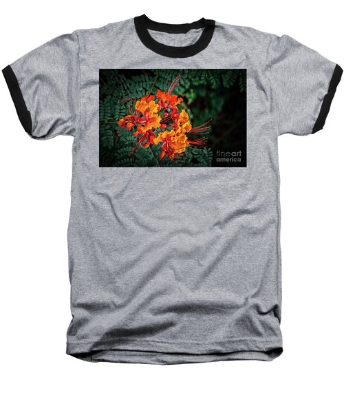 Mexican Bird Of Paradise Baseball T-Shirt by Robert Bales