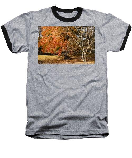 Michigan Autumn 1 Baseball T-Shirt