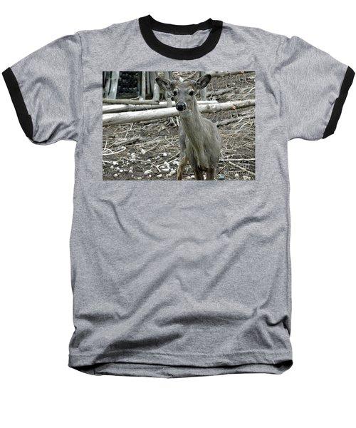 Baseball T-Shirt featuring the photograph Michigan White Tail Deer by LeeAnn McLaneGoetz McLaneGoetzStudioLLCcom