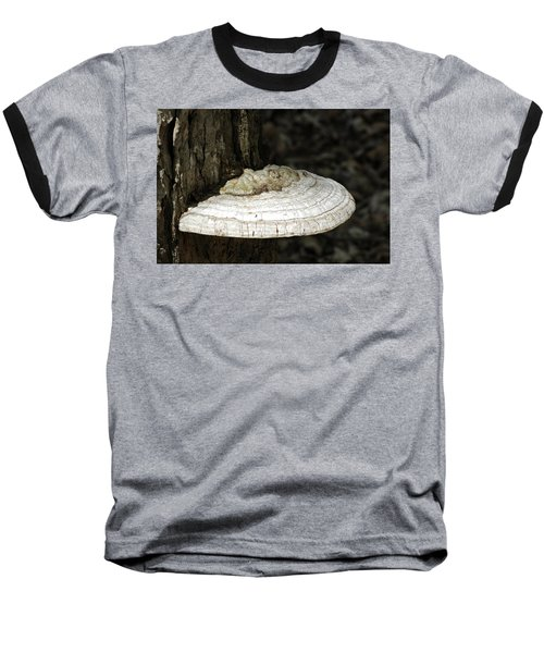 Baseball T-Shirt featuring the photograph Michigantree Fungi by LeeAnn McLaneGoetz McLaneGoetzStudioLLCcom