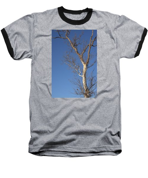 Mighty Tree Baseball T-Shirt