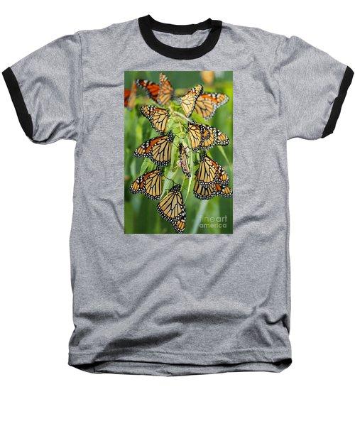 Migration Of Monarchs Baseball T-Shirt