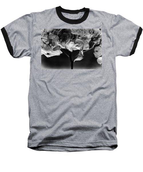 Miguel's Hydrangea 3 Baseball T-Shirt