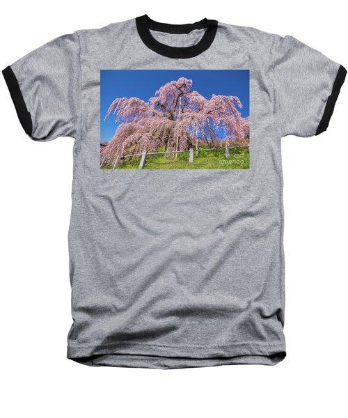 Baseball T-Shirt featuring the photograph Miharu Takizakura Weeping Cherry31 by Tatsuya Atarashi