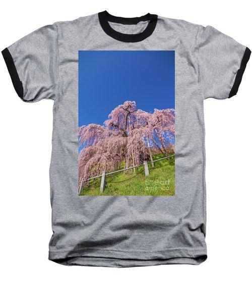 Baseball T-Shirt featuring the photograph Miharu Takizakura Weeping Cherry32 by Tatsuya Atarashi