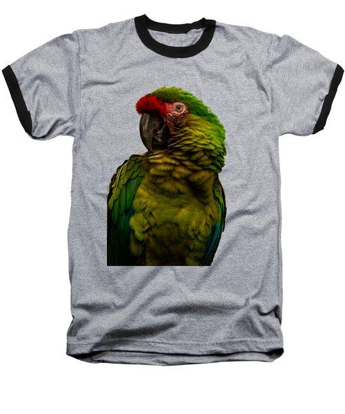 Military Macaw Baseball T-Shirt by Zina Stromberg