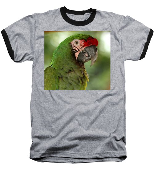 Military Macaw Baseball T-Shirt
