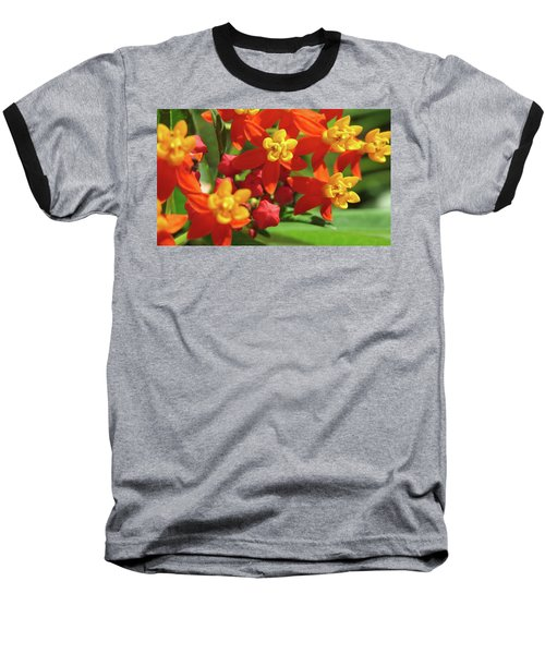Milkweed Flowers Baseball T-Shirt
