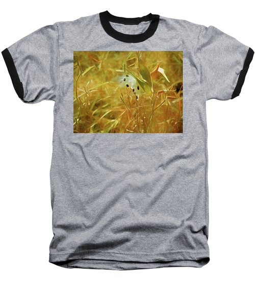 Milkweed In Sunlight 2 Baseball T-Shirt