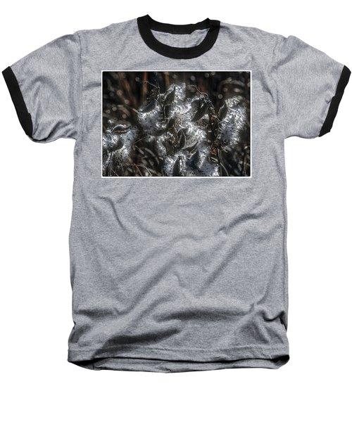 Milkweed Plant Dried Seeds  Baseball T-Shirt by John Brink