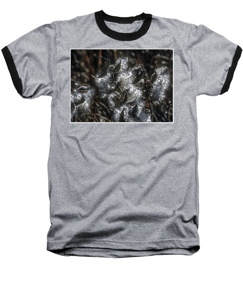 Milkweed Plant Dried Seeds  Baseball T-Shirt