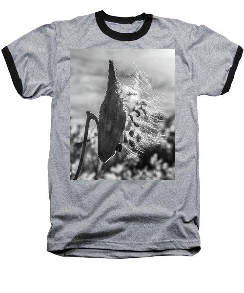 Milkweed Pod Back Lit B And W Baseball T-Shirt