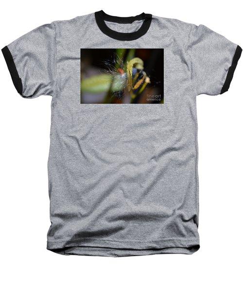 Milkweed Seed Baseball T-Shirt by Lew Davis