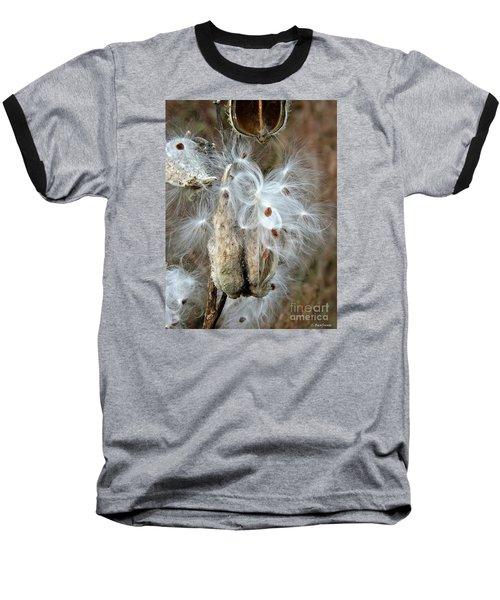 Milkweeds Seeds  Baseball T-Shirt by Christy Ricafrente