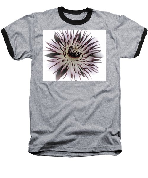 Milky Clematis Baseball T-Shirt by Stephen Melia