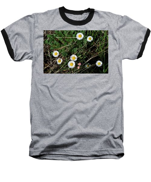 Mini Daisies Baseball T-Shirt