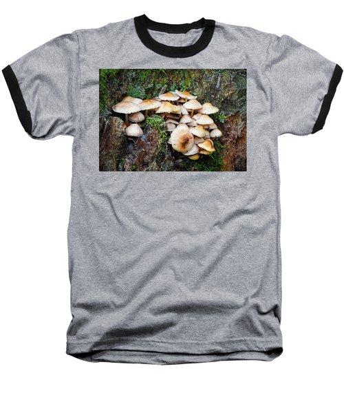 Mini Mushroom Landscape Baseball T-Shirt