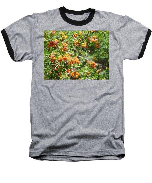 Miniature Fruit Balls Baseball T-Shirt