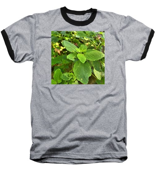 Baseball T-Shirt featuring the photograph Minnesota Plant Life by Lisa Piper