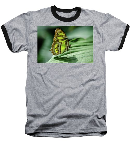 Miss Green Baseball T-Shirt