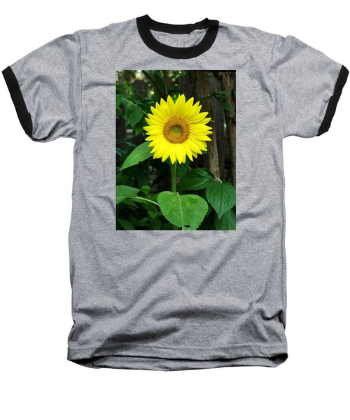 Baseball T-Shirt featuring the photograph Miss Sunshine by Carol Sweetwood