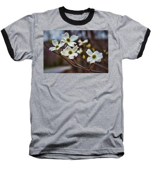 Missouri Dogwoods Baseball T-Shirt
