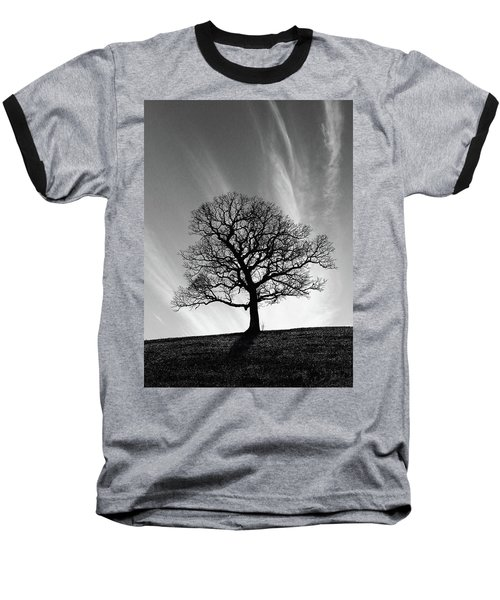 Missouri Treescape Baseball T-Shirt by Christopher McKenzie
