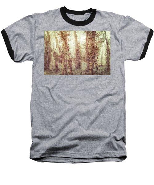Misty Morning Winter Forest  Baseball T-Shirt by Robert FERD Frank