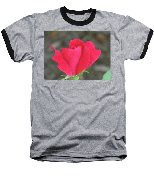 Misty Red Rose Baseball T-Shirt by Michele Wilson