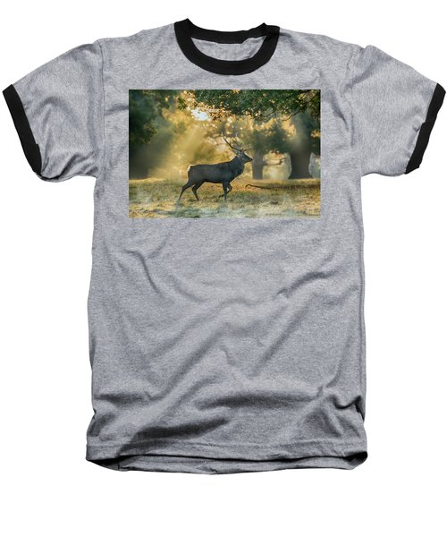 Baseball T-Shirt featuring the photograph Misty Walk by Scott Carruthers