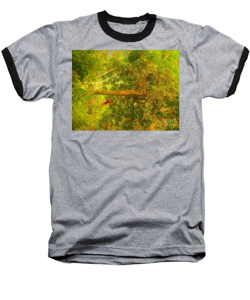Misty Yellow Hue- Ringed Kingfisher In Flight Baseball T-Shirt