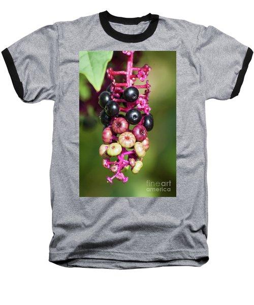 Mixed Berries On Branch Baseball T-Shirt