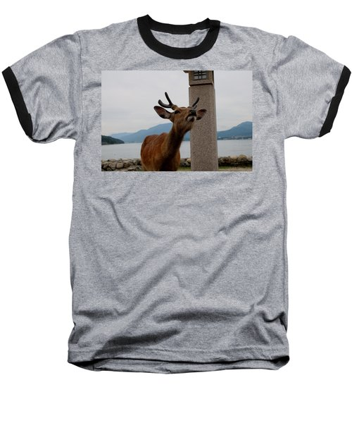 Miyajima Deer Baseball T-Shirt